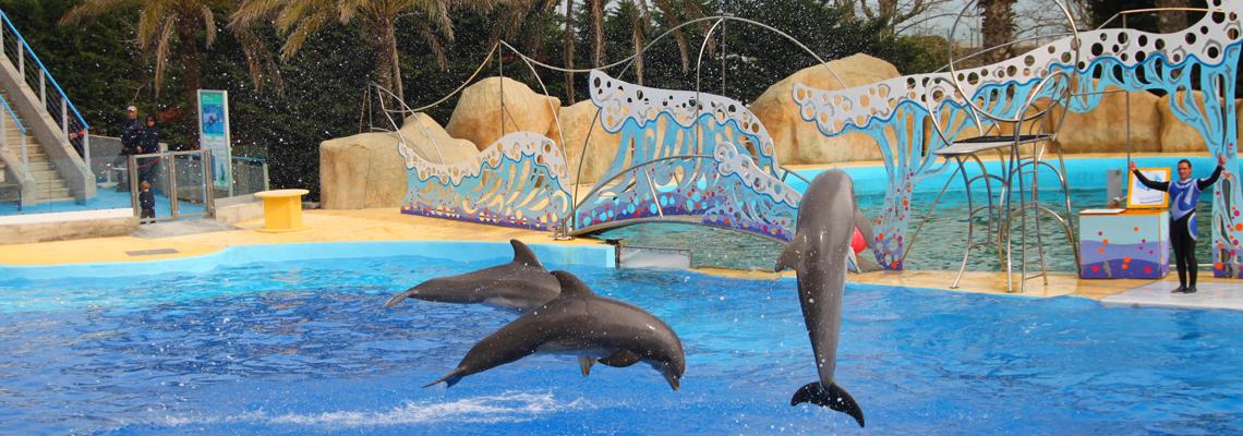 Parc dauphin