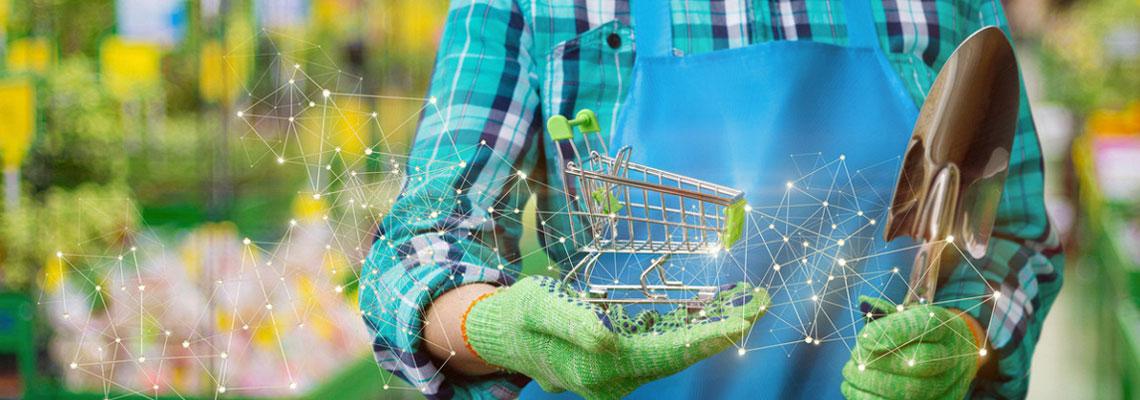 Les marchés agricoles en ligne