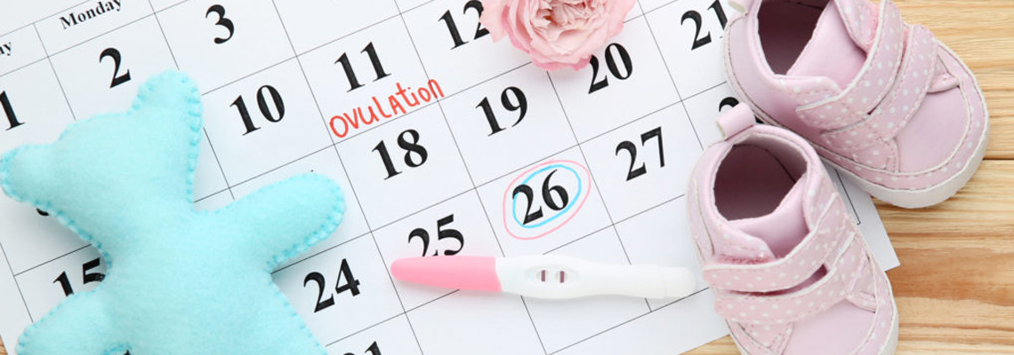 date d'ovulation